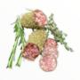 Franse worst. Herbes Provencal (Frankrijk)